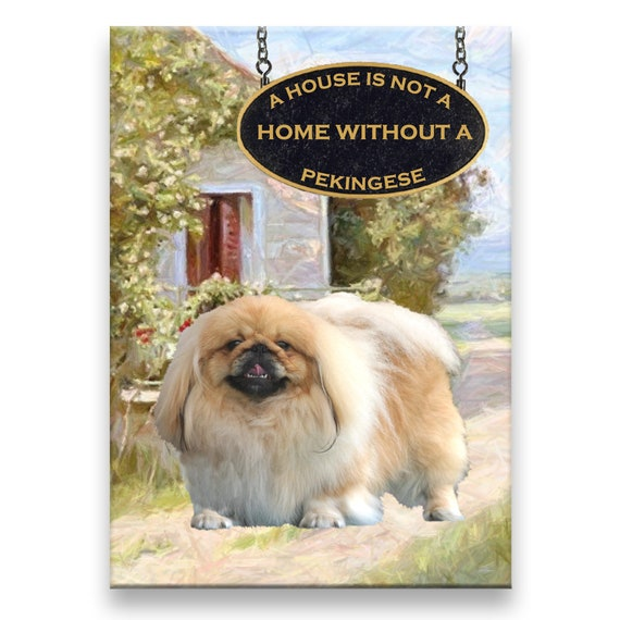 Pekingese a House is Not a Home Fridge Magnet