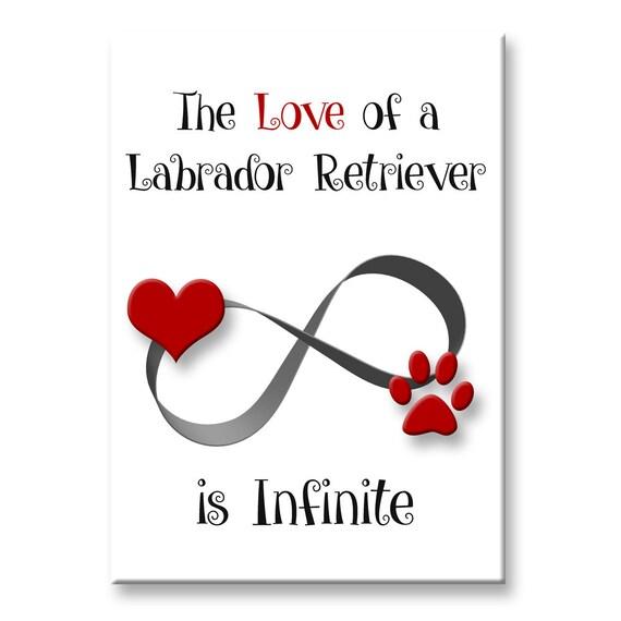 Labrador Retriever Infinite Love Fridge Magnet