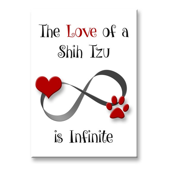 Shih Tzu Infinite Love Fridge Magnet