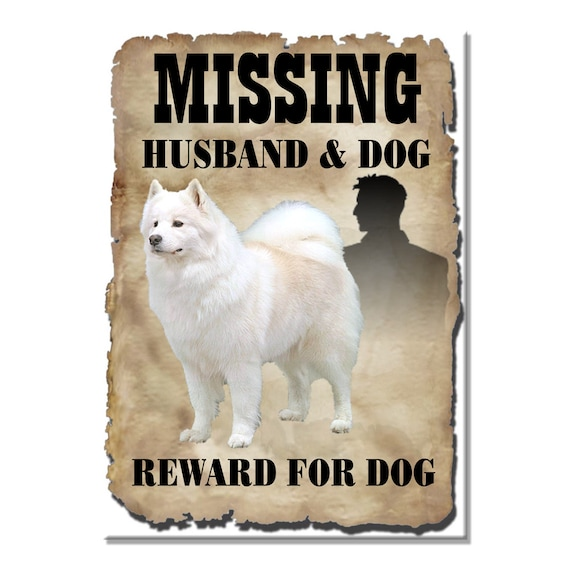 Samoyed Husband Missing Reward Fridge Magnet