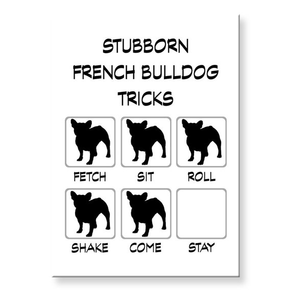 French Bulldog Stubborn Tricks Funny Fridge Magnet