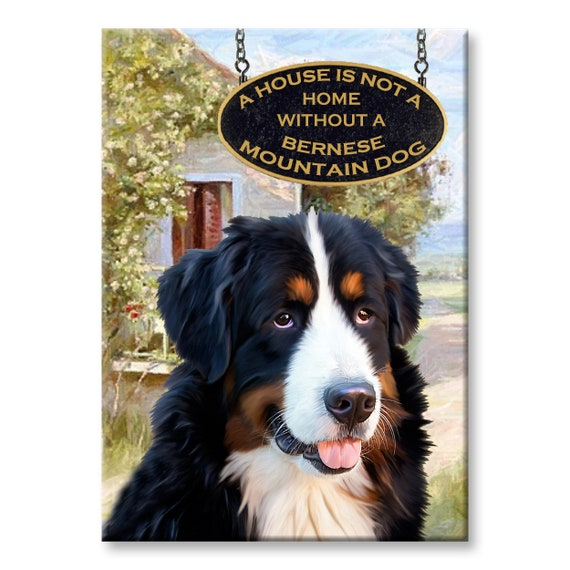 Bernese Mountain Dog a House is Not a Home Fridge Magnet