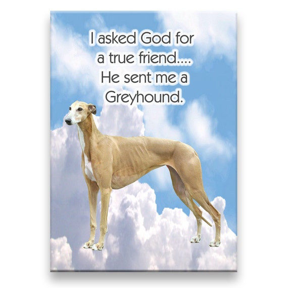 Greyhound True Friend Fridge Magnet No 2