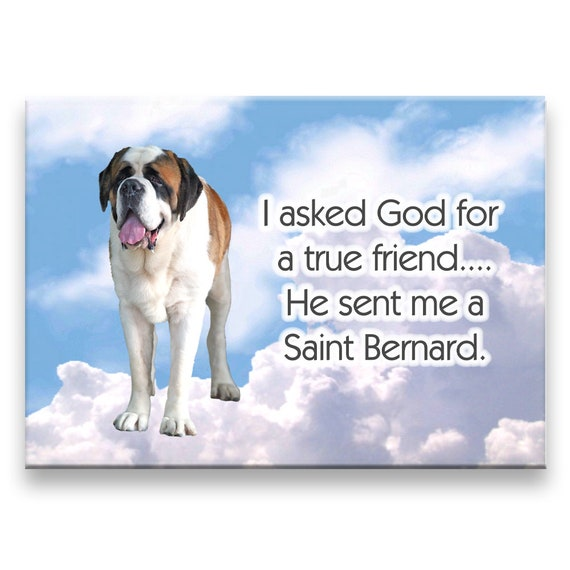 Saint Bernard True Friend Fridge Magnet