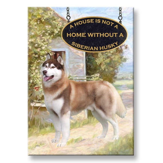 Siberian Husky a House is Not a Home Fridge Magnet No 2