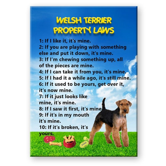 Welsh Terrier Property Laws Fridge Magnet