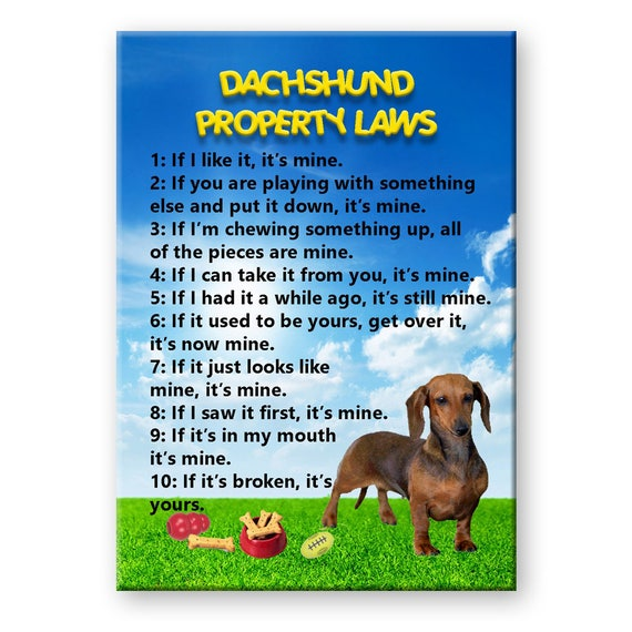 Dachshund Property Laws Fridge Magnet No 1