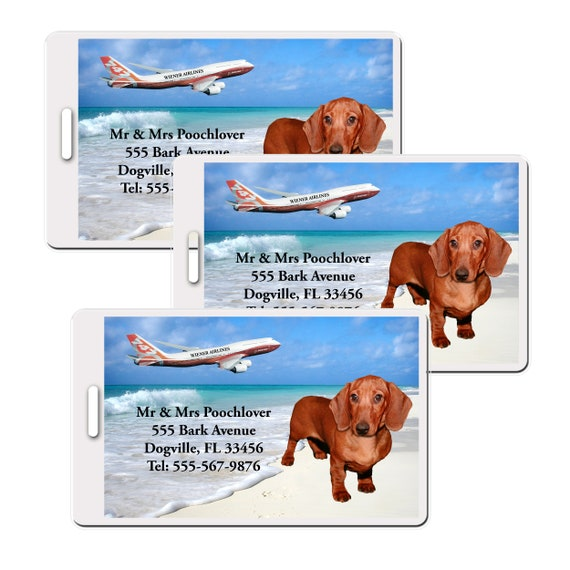 Dachshund Set of 3 Personalized Luggage Tags (#5)