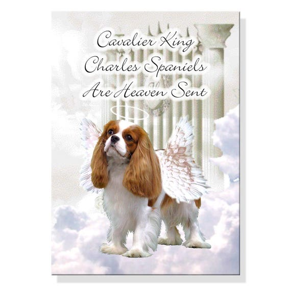 Cavalier King Charles Spaniel Heaven Sent Fridge Magnet No 2