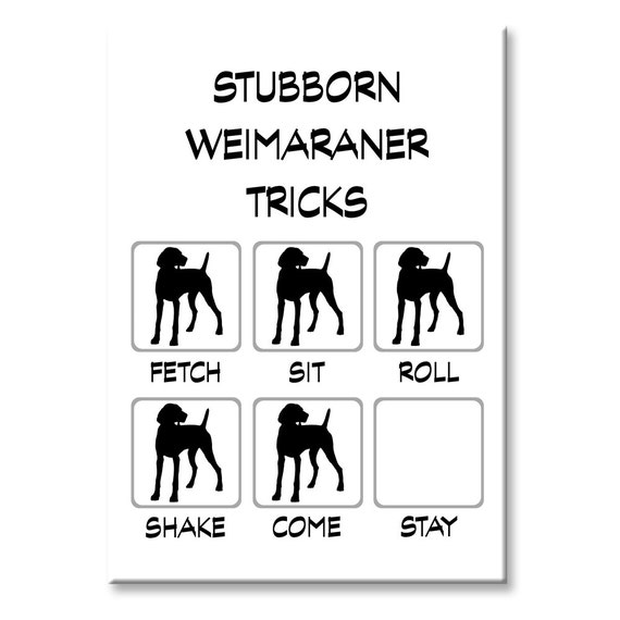 Weimaraner Stubborn Tricks Fridge Magnet
