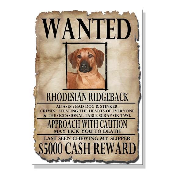Rhodesian Ridgeback Wanted Poster Fridge Magnet