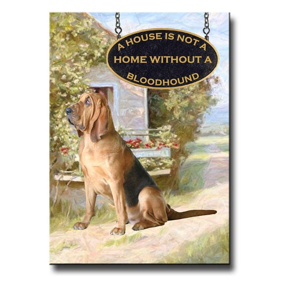 Bloodhound a House is Not a Home Fridge Magnet