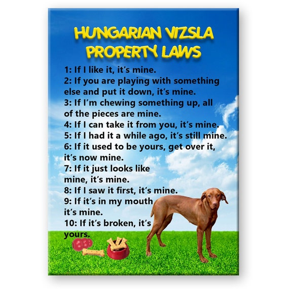 Hungarian Vizsla Property Laws Fridge Magnet