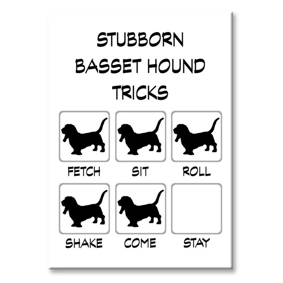 Basset Hound Stubborn Tricks Fridge Magnet