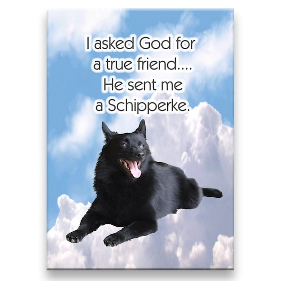 Schipperke True Friend Fridge Magnet