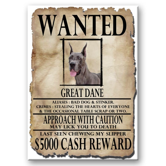 Great Dane Wanted Poster Fridge Magnet No 1