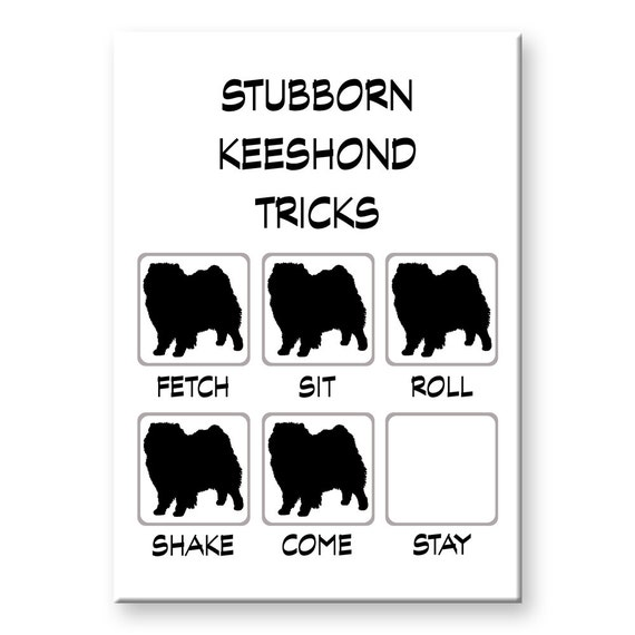 Keeshond Stubborn Tricks Fridge Magnet