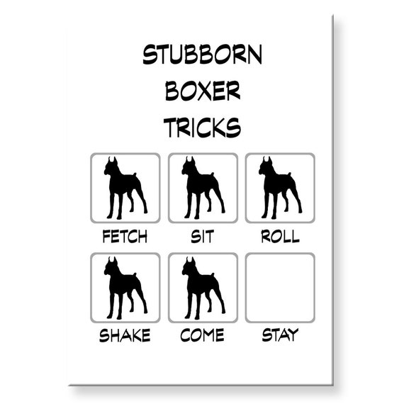 Boxer Dog Stubborn Tricks Funny Fridge Magnet