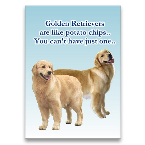 Golden Retriever Can't Have Just One Fridge Magnet