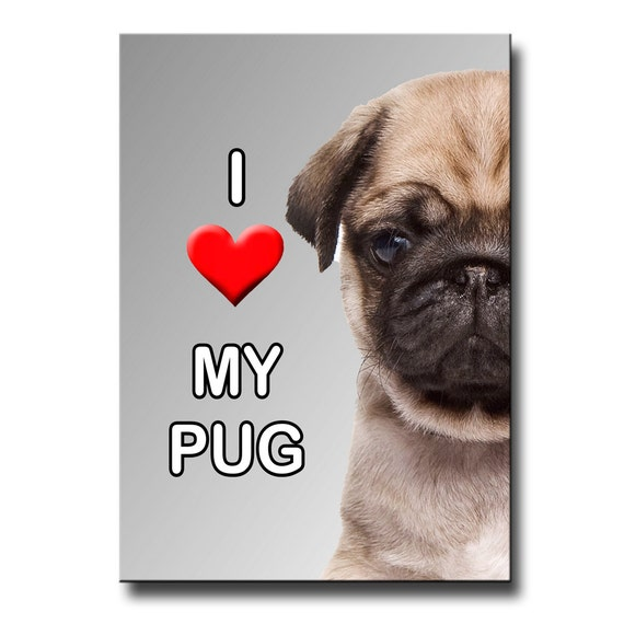 Pug I Love My Pug Puppy Fridge Magnet