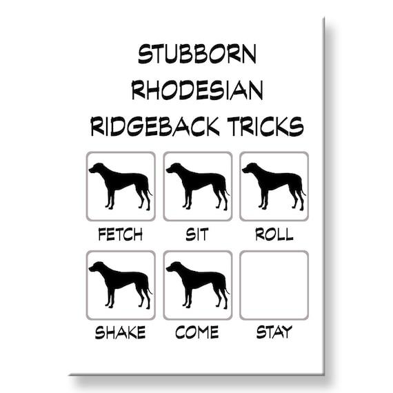 Rhodesian Ridgeback Stubborn Tricks Fridge Magnet