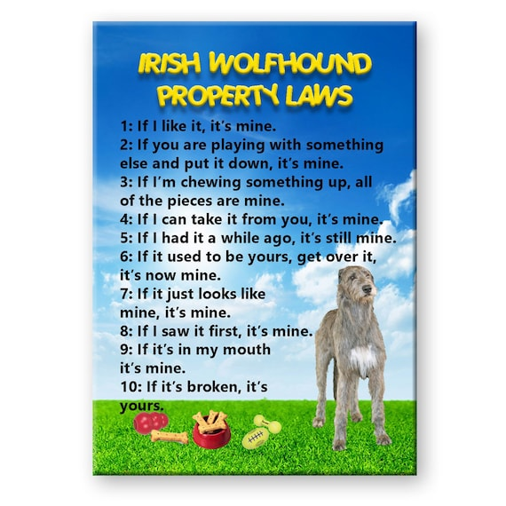 Irish Wolfhound Property Laws Fridge Magnet