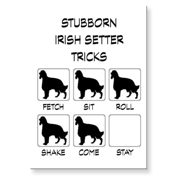 Irish Setter Stubborn Tricks Fridge Magnet