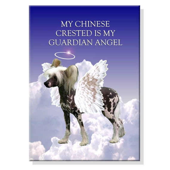 Chinese Crested Guardian Angel Fridge Magnet