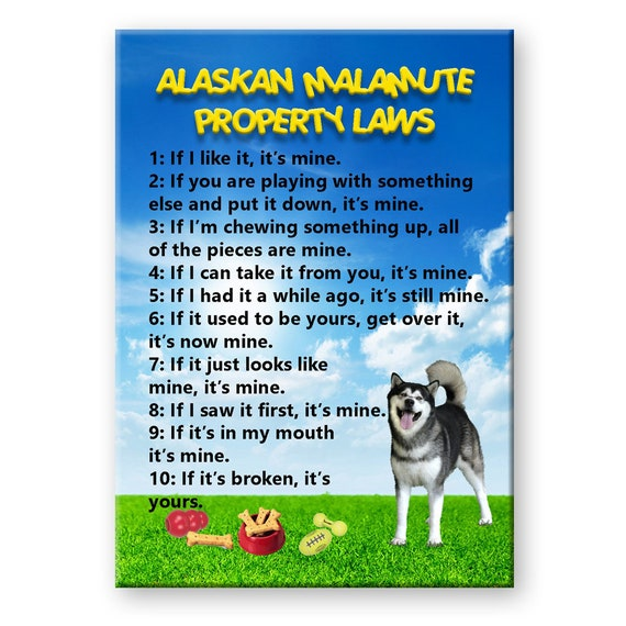 Alaskan Malamute Property Laws Fridge Magnet