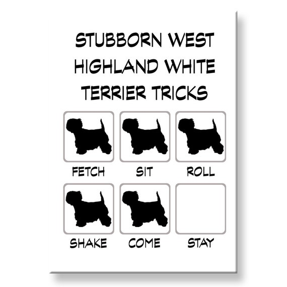 West Highland White Terrier Stubborn Tricks Fridge Magnet