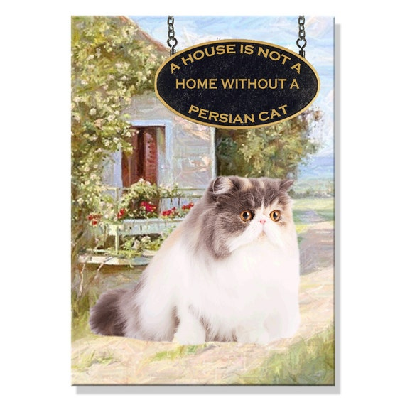 Persian Cat a House is Not a Home Fridge Magnet No 2
