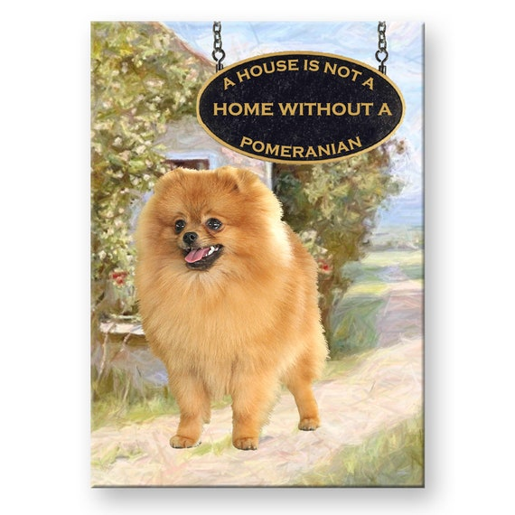 Pomeranian a House is Not a Home Fridge Magnet