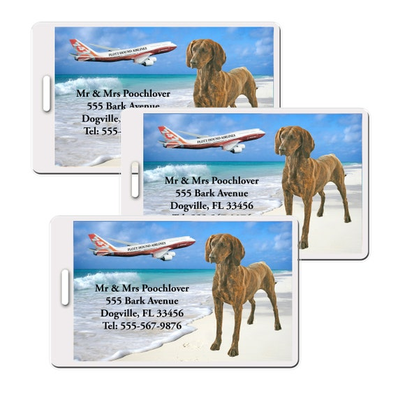 Plott Hound Set of 3 Personalized Luggage Tags
