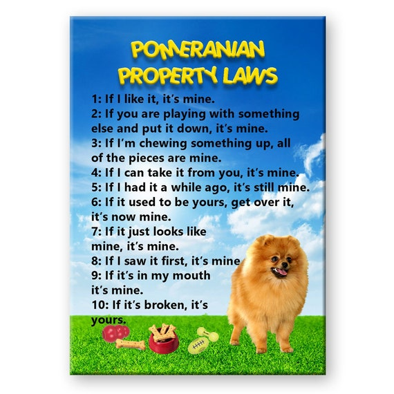 Pomeranian Property Laws Fridge Magnet