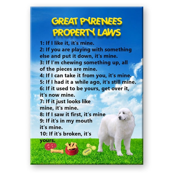 SHIH TZU Property Laws FRIDGE MAGNET Steel Cased DOG