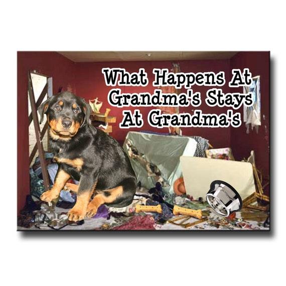 Rottweiler What Happens at Grandmas Fridge Magnet No 1