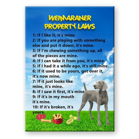 Weimaraner Property Laws Fridge Magnet