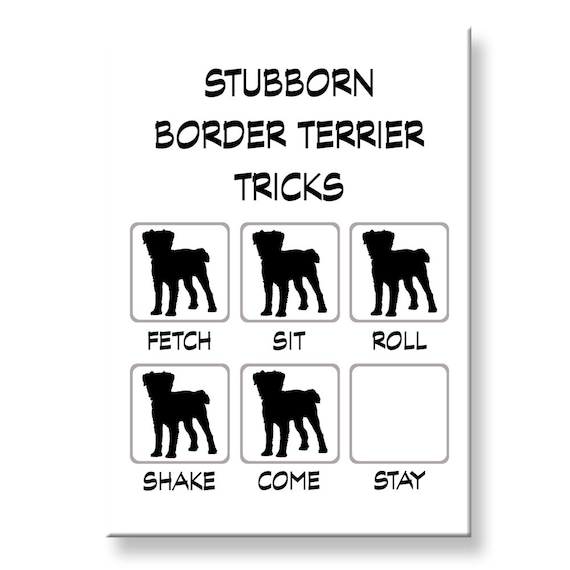 Border Terrier Stubborn Tricks Funny Fridge Magnet