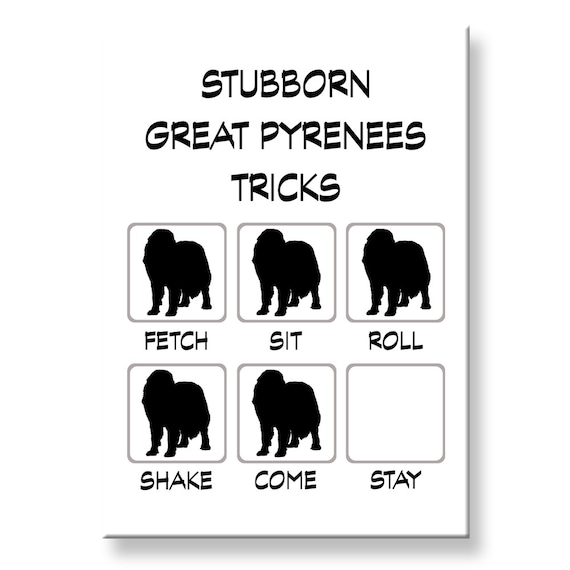 Great Pyrenees Stubborn Tricks Funny Fridge Magnet