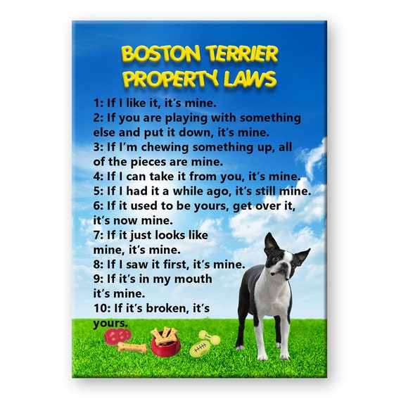 Boston Terrier Property Laws Fridge Magnet No 1