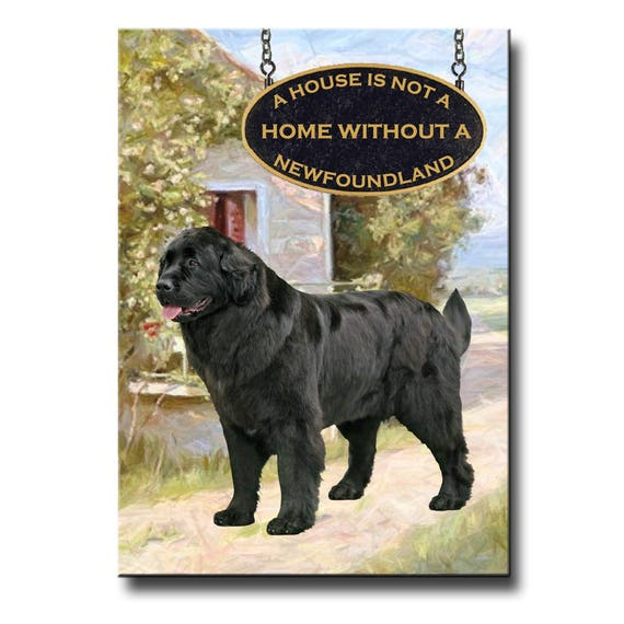 Newfoundland a House is Not a Home Fridge Magnet No 2 Black