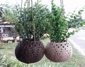 Set 2 Pcs Handicraft Coconut Shell Hanging Pot Planter/hanging Busket/Rustic Pots/Natural Pots/Gardens/Natural Color/Eco-Friendly