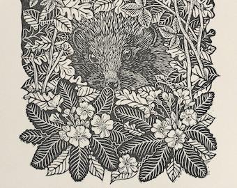 Hedgehog in March, a linocut illustration from The Hedgehog Handbook