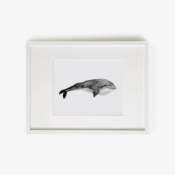 photo about Whale Printable known as Whale Artwork, Whale Prints, Whale, Printable whale, Whale Print, Cule Artwork, Nautical, Lovely pets, whale watercolor, Gray Nursery, Grey Nursery