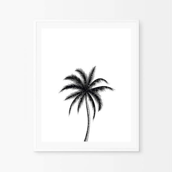Black Palm Art Botanical Posters Coconut Palm Black And