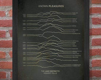 Known Pleasures Poster - The Lake District