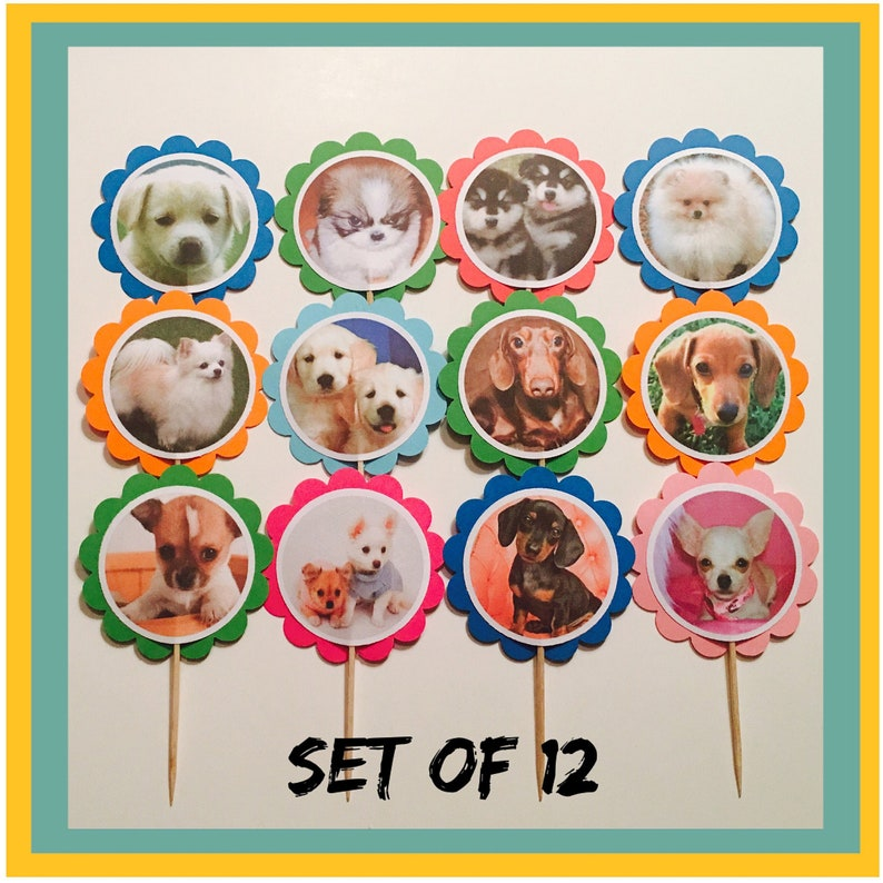 Puppies Theme Birthday 12 Dogs Party Decorations