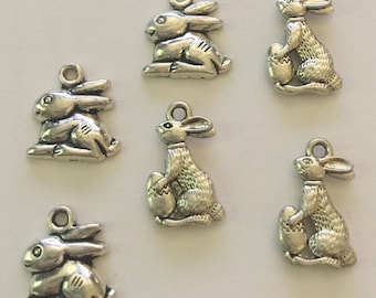 Bunny Rabbit Charms