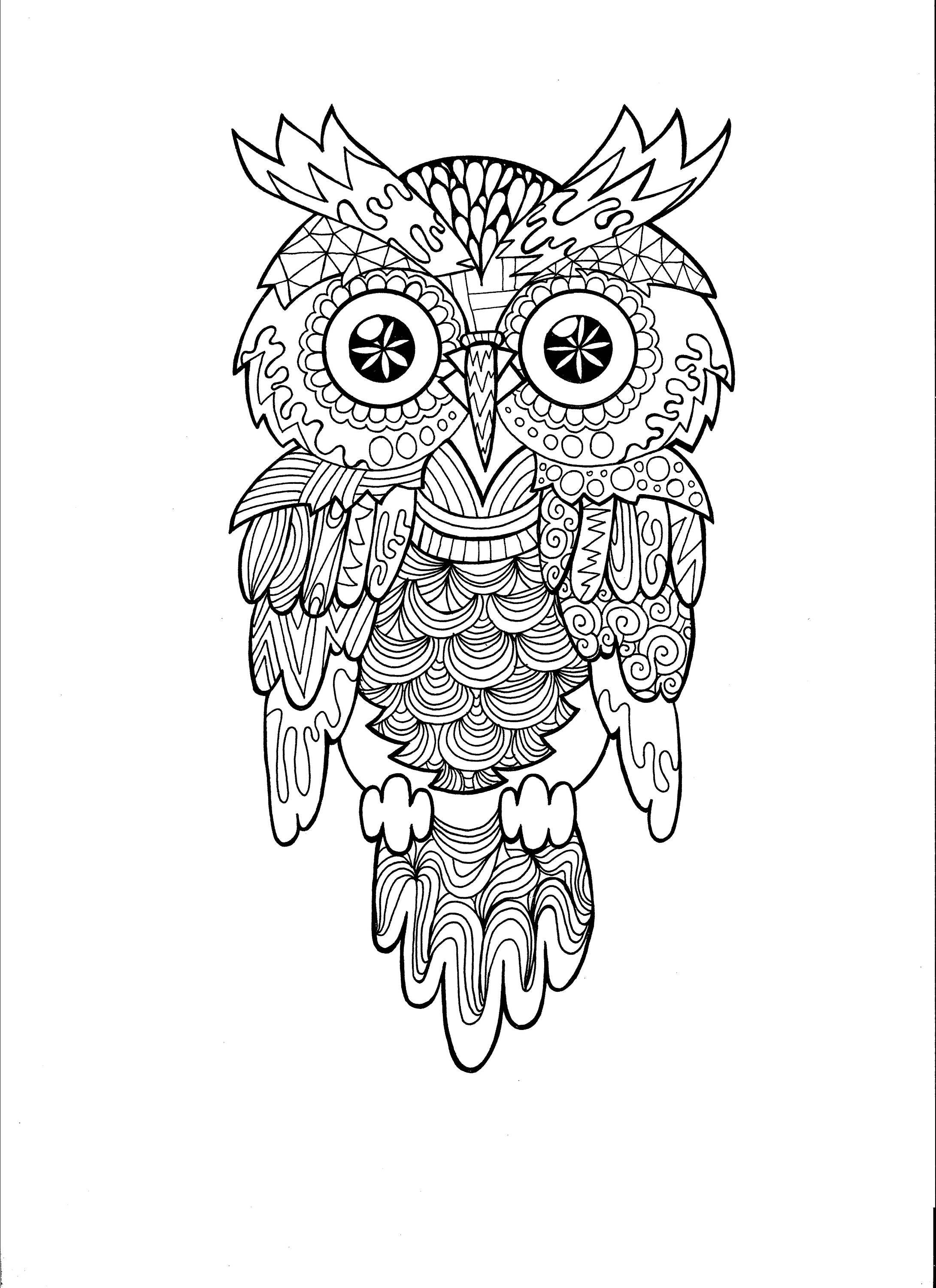 Owl Zentangle Pdf Coloring Page Etsy