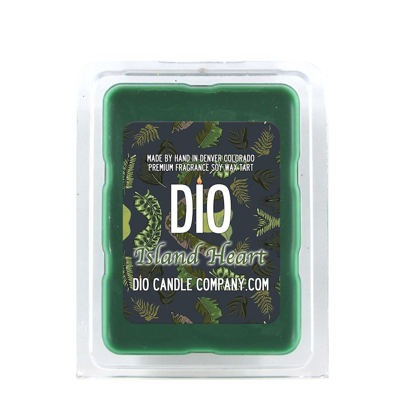 Lasts Longer SIX 1 Vegan Soy Cubes Premium Fragrance is  Stronger Papaya Tropical Greens Island Heart Vacation Scented Wax Tart